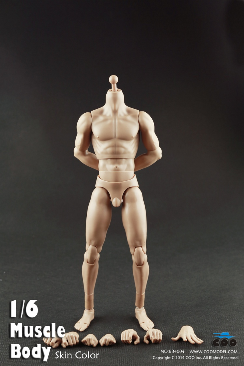 COOMODEL 1//6 NEW:2.0 Muscle male Body NO:BD004 12/'/' Action Figure Body F HT Head