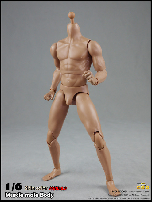 "[CM-BD003] COO Model Version 2.0 Muscle Male Body 9.8"" Height"