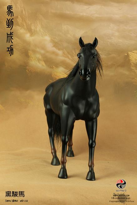 [303T-106] 303 Toys 1/6 Black Horse
