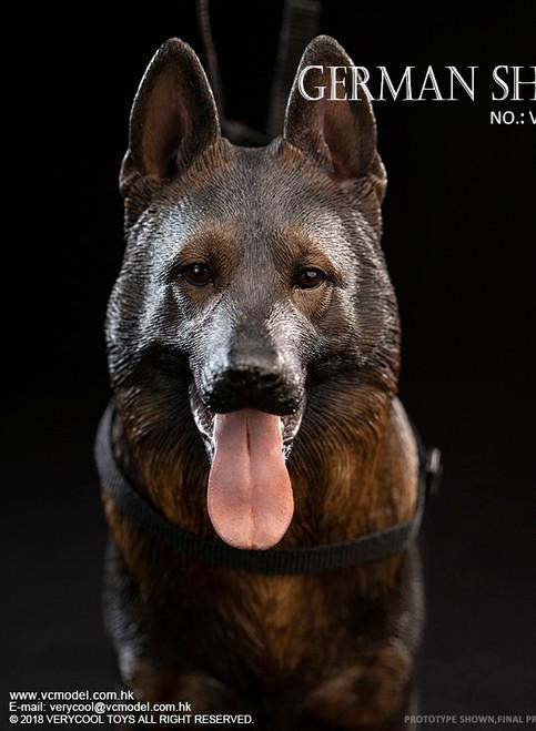 [VCF-2037C] 1/6 German Shepherd Dog by Very Cool
