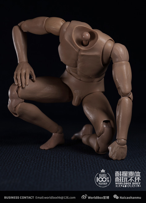 [WB-AT020] 1/6 Durable Universal Action Figure Body by World Box