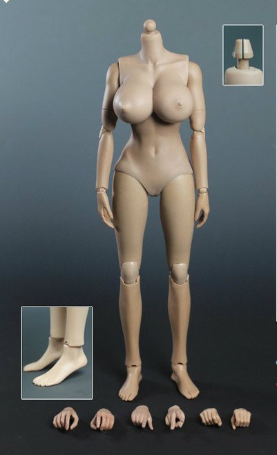 [PT-XL003] Play Toy Collectible Female Action Figure Body 2.0 - D Cup + Version