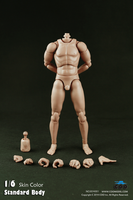 "[CM-B34001] COO Model Standard Male Body with Narrow Shoulders 9.8"" Tall"