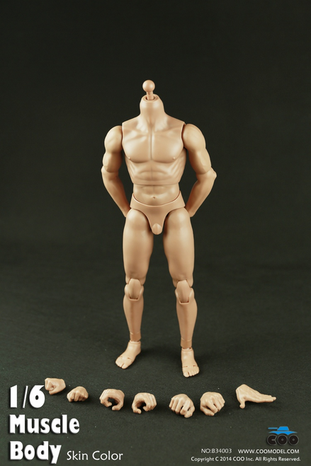 "[CM-B34003] COO Model Muscle Male Body 9.8"" Tall"