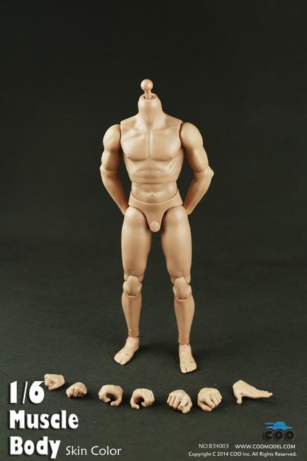 "[CM-B34003] COO Model Muscle Male Body 9.8"" Tall"