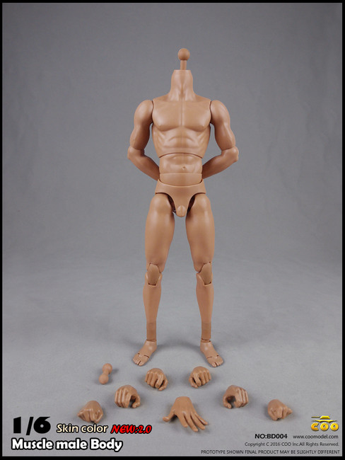 "[CM-BD004] COO Model Version 2.0 Muscle Male High Body 10.6"" Height"