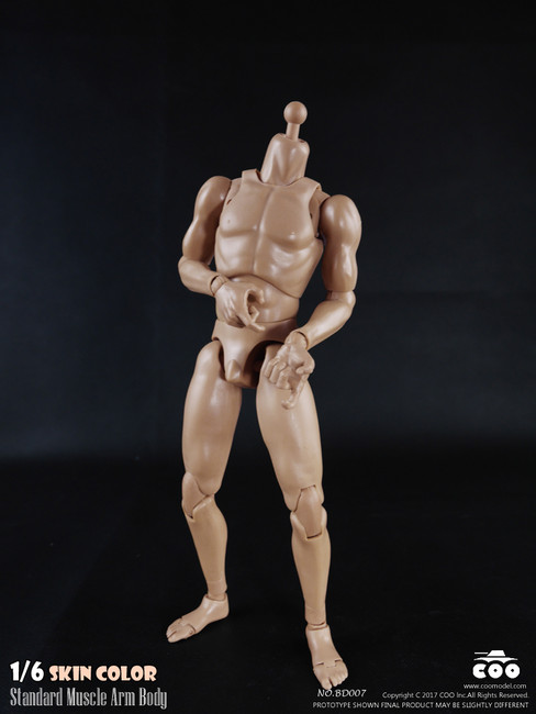 "[CM-BD007] COO Model Standard 1/6 Muscle Arm Body 9.84"" Height"