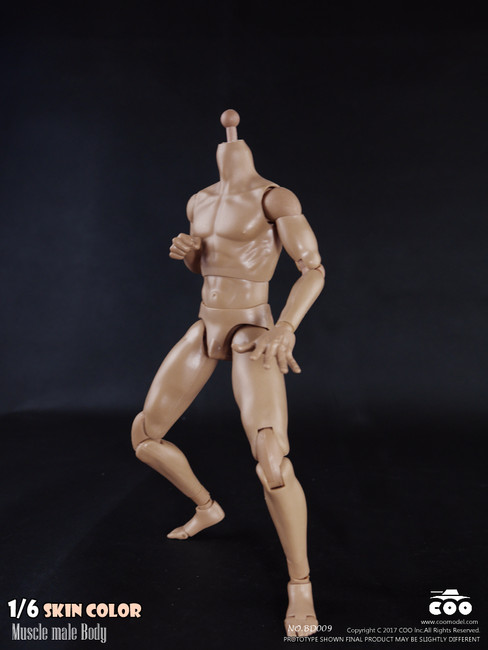 """[CM-BD009] COO Model 1/6 Muscle Male Body with Skin Color 9.84"""" Height"""