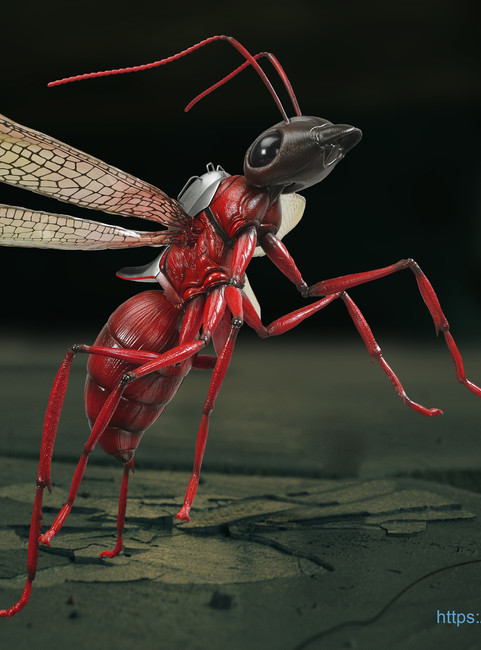 [SF-004B] 1:6 Scale Red Ant-onio Banderas by Special Figures