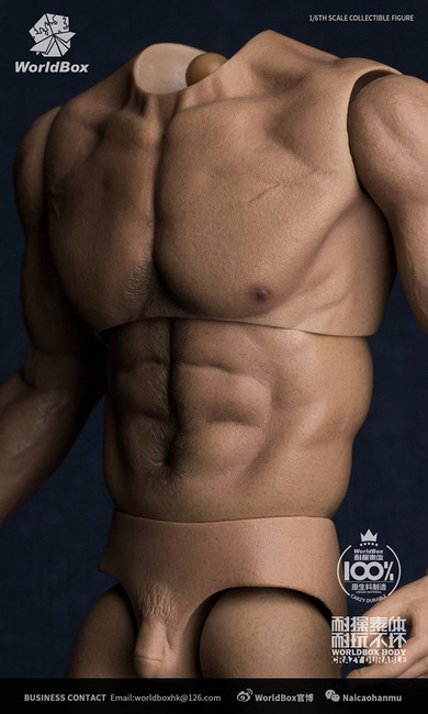 [WB-AT017] 1/6 Universal Body Action Figure Body by World Box