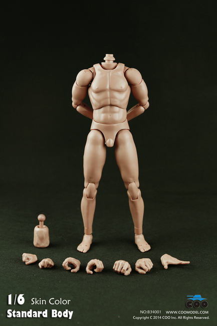 """[CM-B34001] COO Model Standard Male Body with Narrow Shoulders 9.8"""" Tall"""