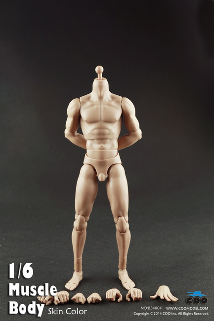 "[CM-B34004] COO Model Muscle Male Body 10.6"" Tall"