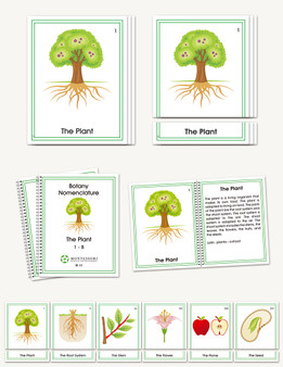 Botany Early Childhood Nomenclature - sku BP.33 - 1