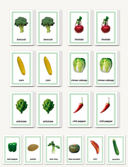 Picture Card Matching- Vegetables - sku LAP.21 - 1