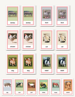 Picture Card Matching- Domesticated Animals - sku LAP.30 - 1