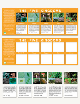 The Five Kingdoms Charts - sku BE.01 - 1