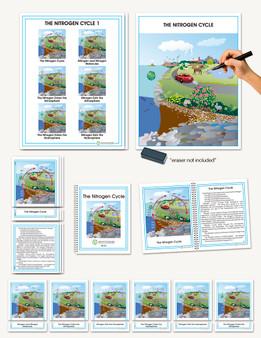 Biogeochemical Cycles, The Nitrogen Cycle - sku CE.23 - 1