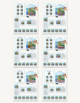 Biogeochemical Cycles Complete Set - sku CE.20 - 1