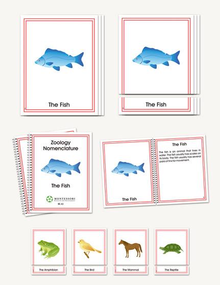 Zoology Early Childhood Nomenclature - sku BP.43 - 1
