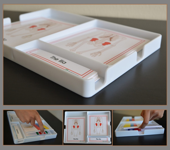 Three Part Cards Trays Containers - sku DC.05 - 1