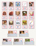 Phonic Picture Cards with Word Label - sku LAP.04 - 1