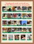 Elementary Manuals Set - sku ME.CS - 1