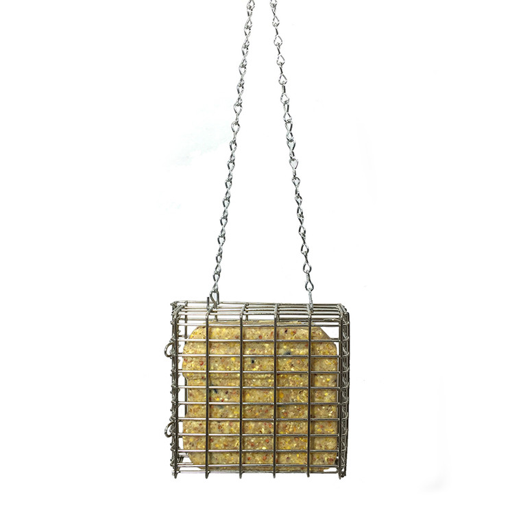 Droll Yankees Premium Single Suet Feeder