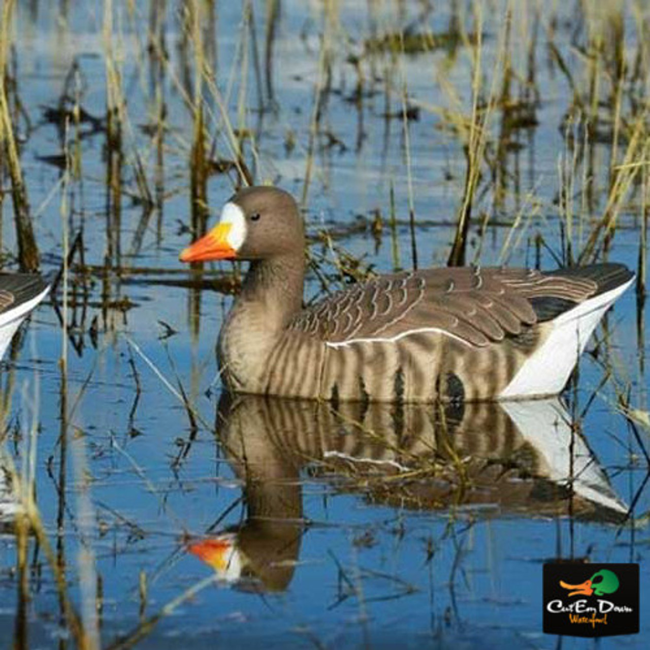 Avery Greenhead Gear Pro-Grade Speckle Belly Floaters Decoy,Active Pack,4-Pack