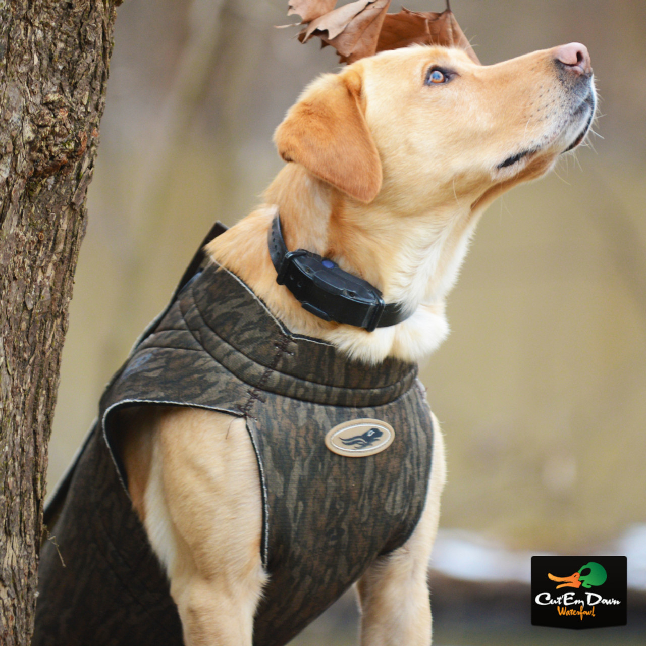 AVERY OUTDOORS X SMALL DUCK GEAR BOATERS DOG PARKA VEST NEW