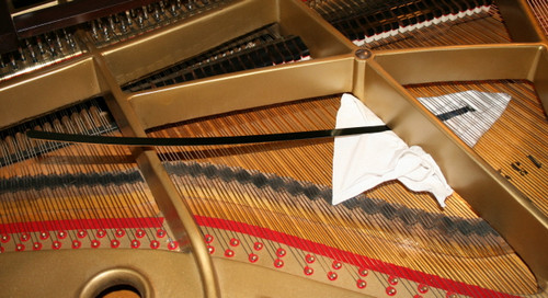 Grand Piano Soundboard Cleaner