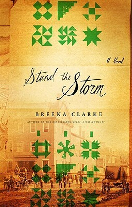 Stand The Storm: A Novel
