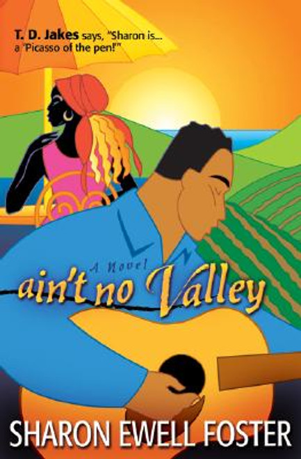 Ain't No Valley: A Novel