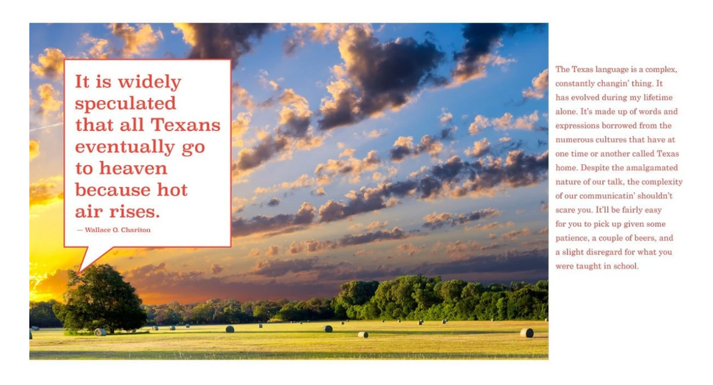 Y'all Need This Book: The Definitive Guide to Being a Texan