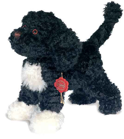 Teddy Hermann Portuguese Waterdog
