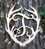 Antler Monogram Framed Letter Wooden Unfinished Craft-T