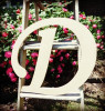 Custom Wooden Letter Wall Decor Monotype-D
