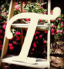 Custom Wooden Letter Wall Decor Monotype-T