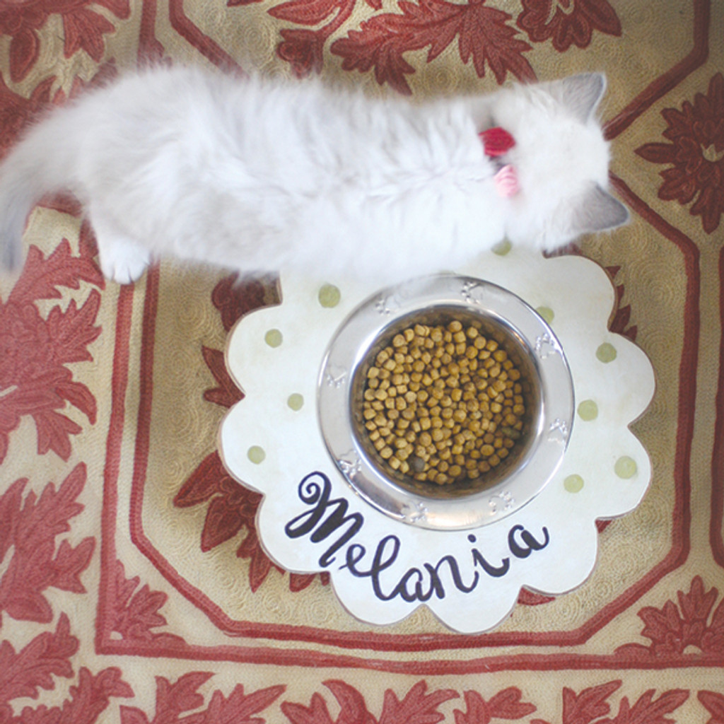 Flower Pet Feeder DIY Tutorial
