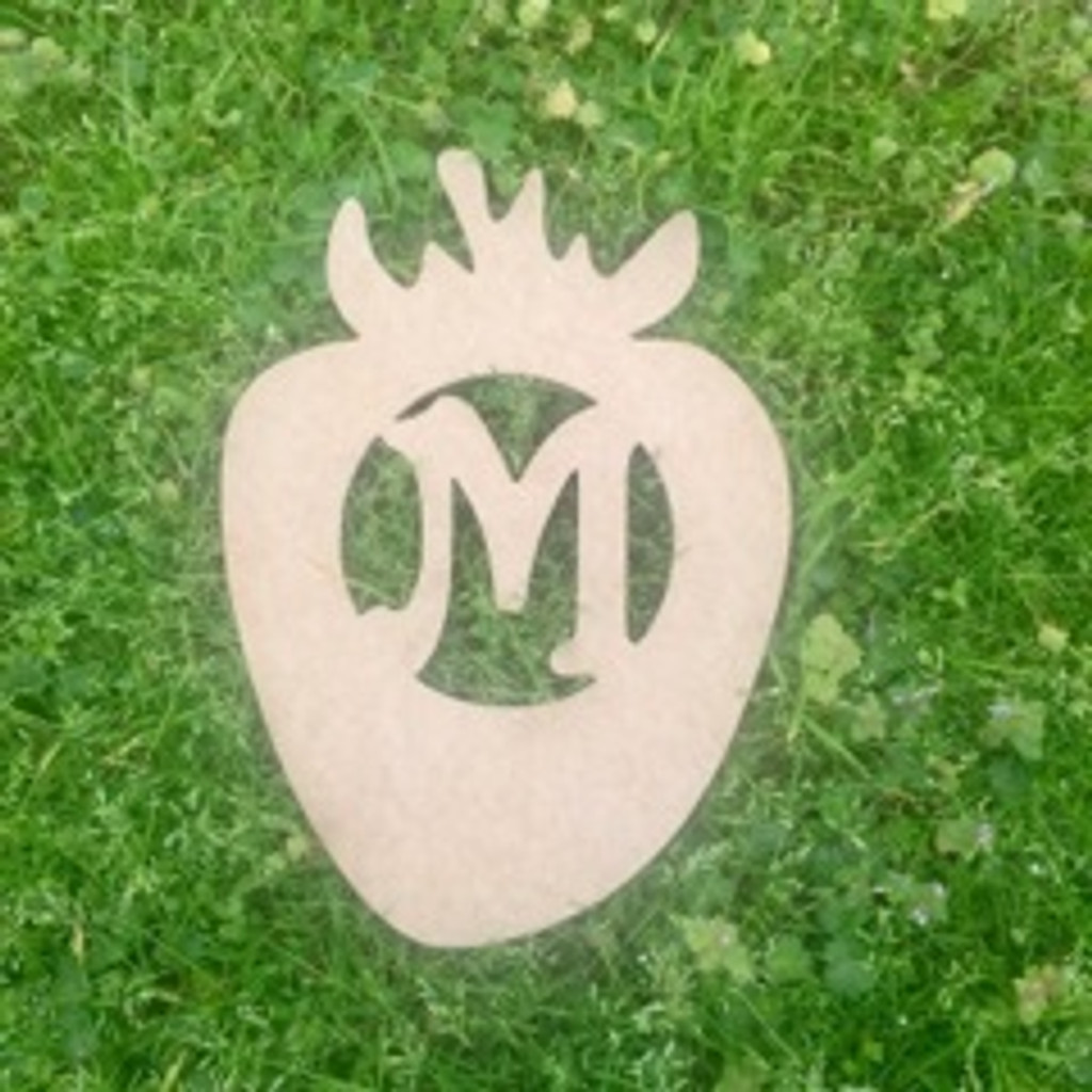 Strawberry Monogram Beltorian Letter Wooden - Unfinished  DIY Craft