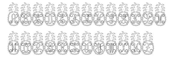 Curly Pineapple Framed Monogram Letter Unfinished DIY Craft