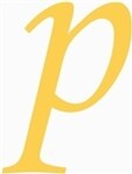 Wooden Lowercase Unfinished Letter Wall Art-p