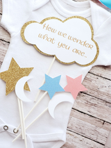 Gender Reveal Twinkle Little Star and Moon Baby Shower 5 Piece Centerpiece