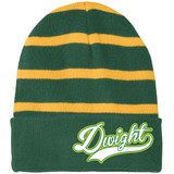 Dwight Script Green and Yellow Stripes Beanie
