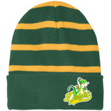 Dwight Mascot Green and Yellow Stripes Beanie