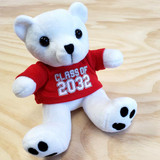 "6"" Polar Bear Stuffed Animal - Class of 2032"