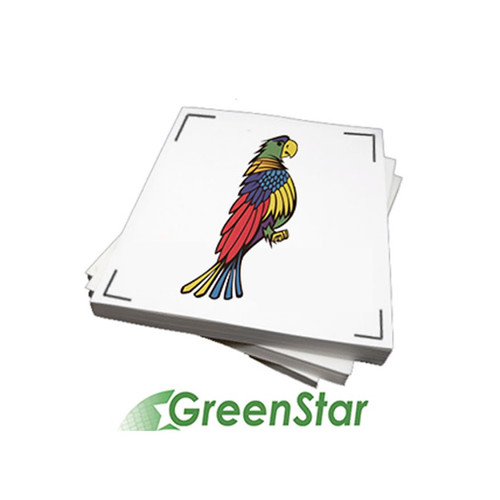 "GreenStar 8.5""x11"" Printable Inkjet Vinyl for Desktop Printers 25 Sheets"