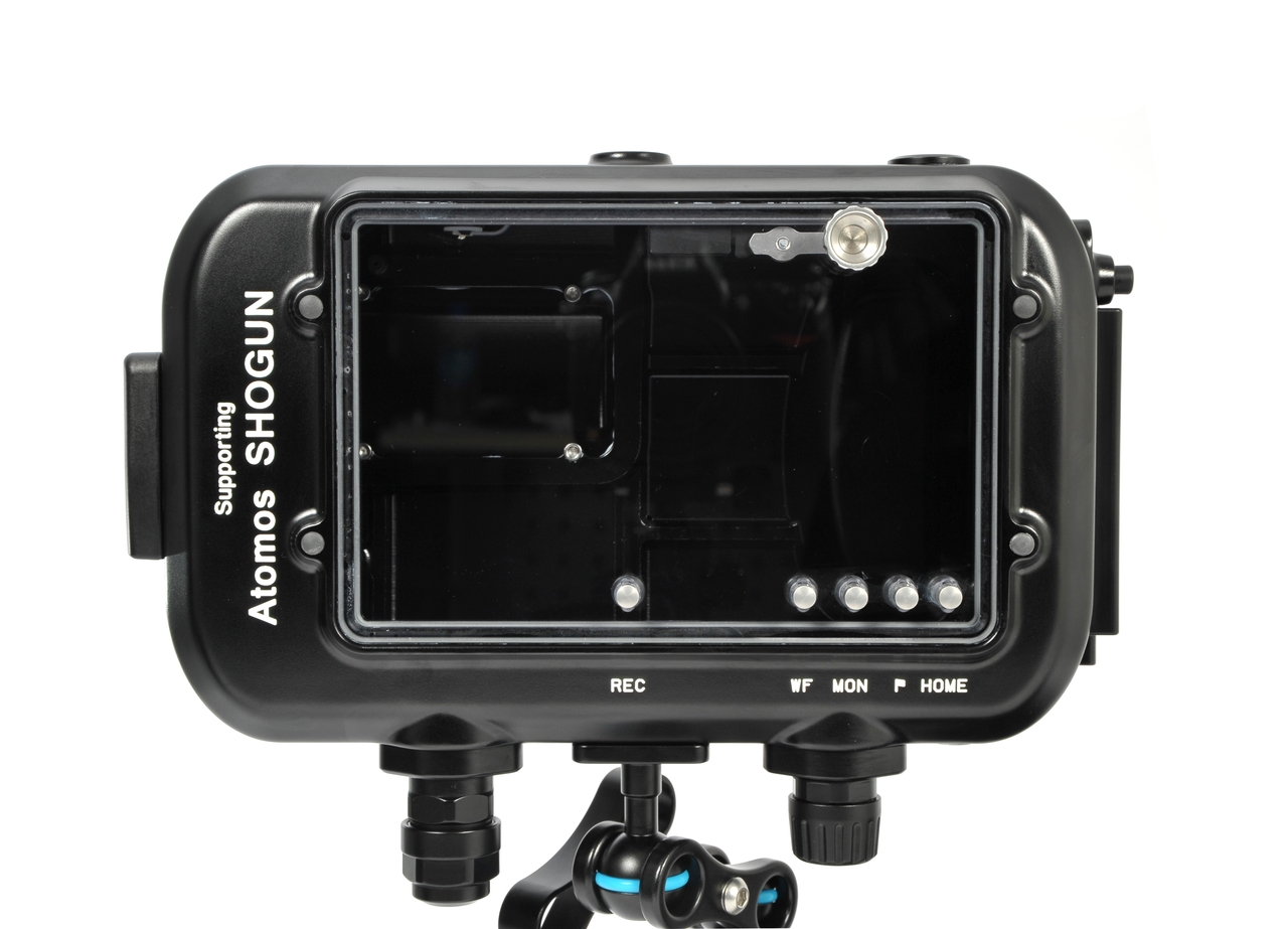 17905 NA-AS for Atomos Shogun 10-bit 4K SDI / HDMI Monitor (SDI input)