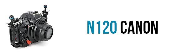 n120-canon-pcb.png