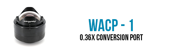 wacp-1-button.png