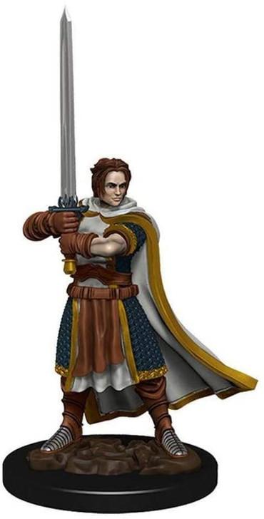 D&D Premium Painted Figure: Male Human Cleric (Wave 4)